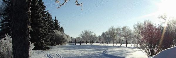 ski-trail-homepage