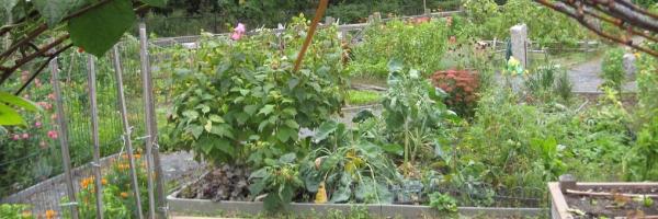 gardens-homepage